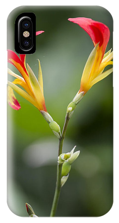 Tropical Flower IPhone X / XS Case featuring the photograph Tropical Flower 6 by Russell Millner
