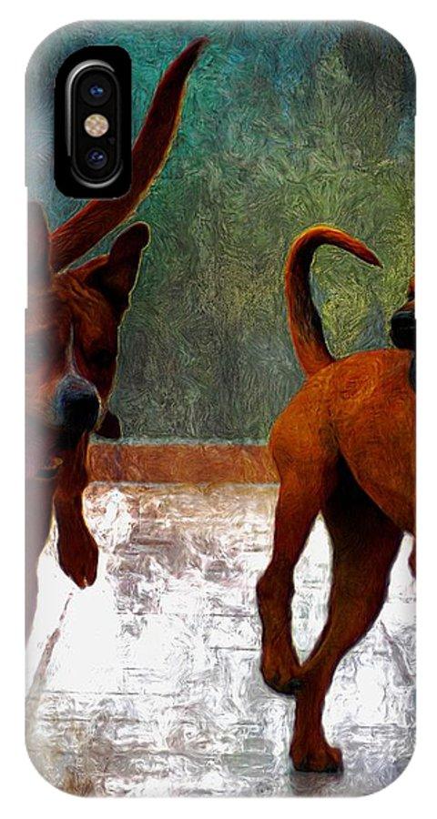 John+kolenberg IPhone X Case featuring the photograph Two Dogs by John Kolenberg