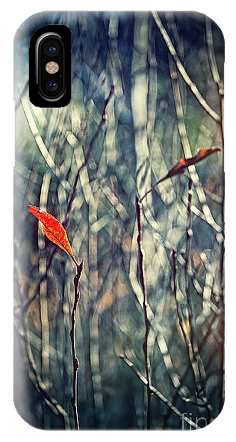 Autumn IPhone X Case featuring the photograph Untitled by HD Connelly