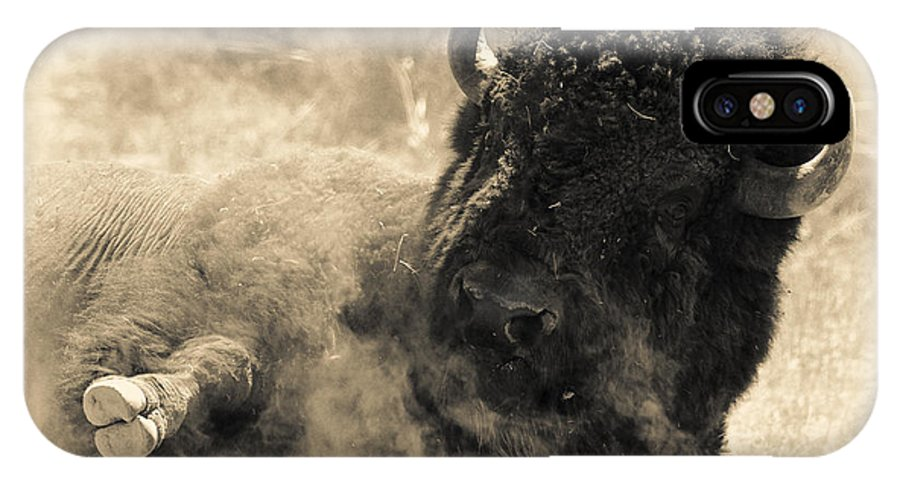 2011 IPhone X Case featuring the photograph Wild West Bison by Andy-Kim Moeller