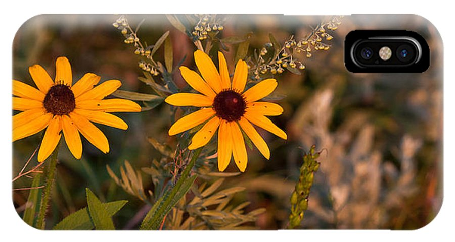 080210 IPhone X Case featuring the photograph Wildflower by Wayne Vedvig