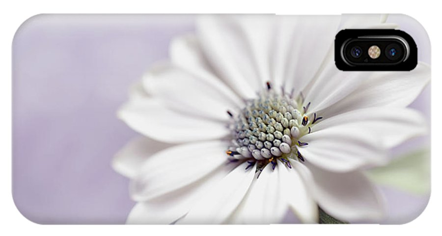 Flower IPhone X Case featuring the photograph Wintery by Heidi Westum