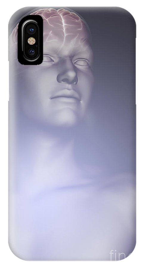 Biomedical Illustration IPhone X Case featuring the photograph The Human Brain by Science Picture Co