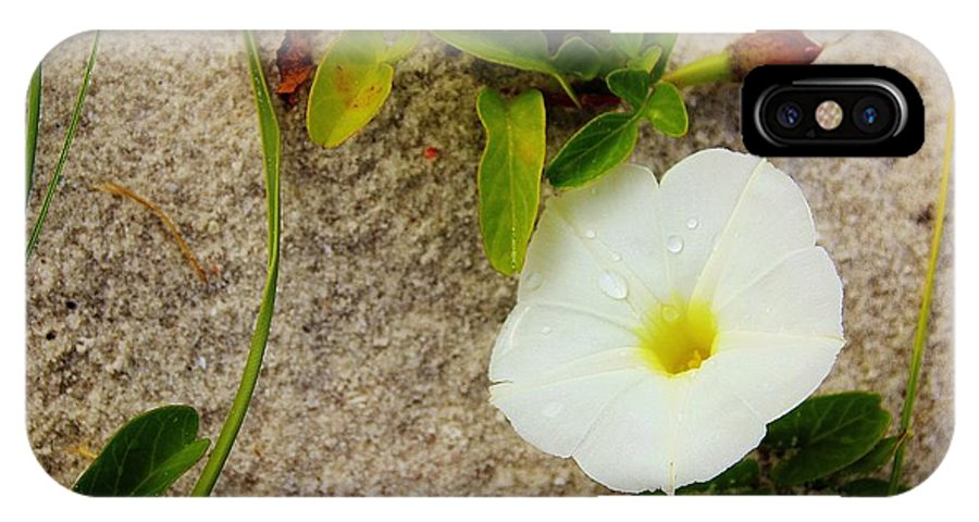Flower IPhone X Case featuring the photograph 11032013020 by Debbie L Foreman