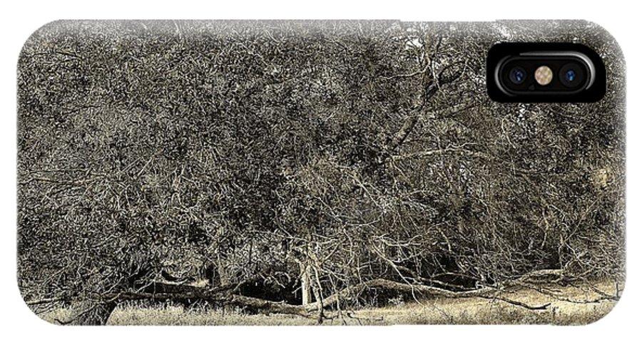 Landscape IPhone X Case featuring the photograph 11282013022 by Debbie L Foreman