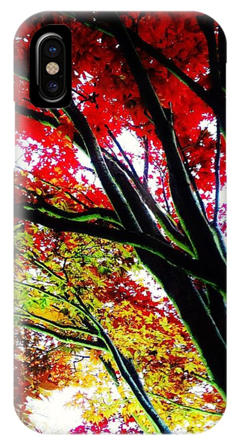 Leaves IPhone X Case featuring the photograph 12032013003 by Debbie L Foreman