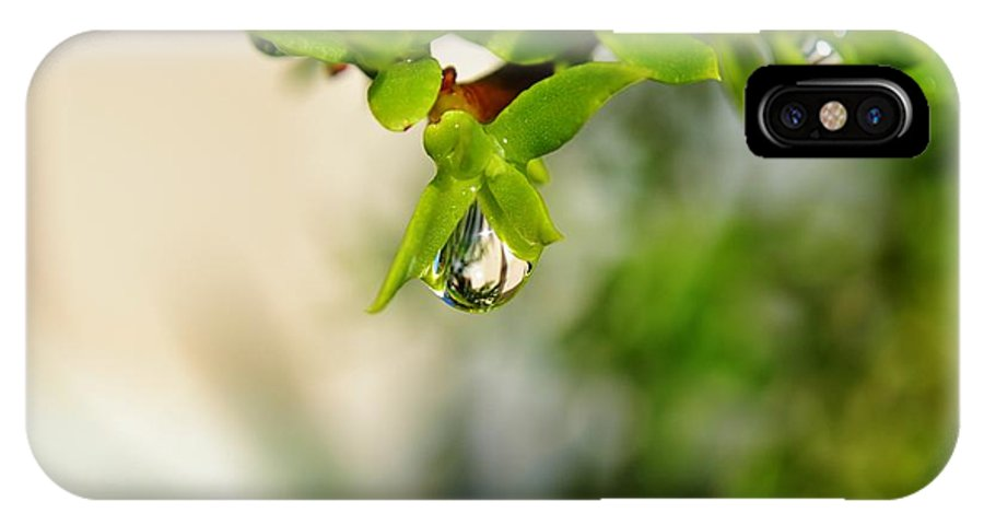 Close Up; Raindrops; Green; Leaf; Reflection; Nature; Plant; Garden; Water; Wet; Droplets; Background; Decorative; Clear; Wallpaper; Desktop; Decor; Detail; IPhone X Case featuring the photograph Raindrop On Leaf by Werner Lehmann