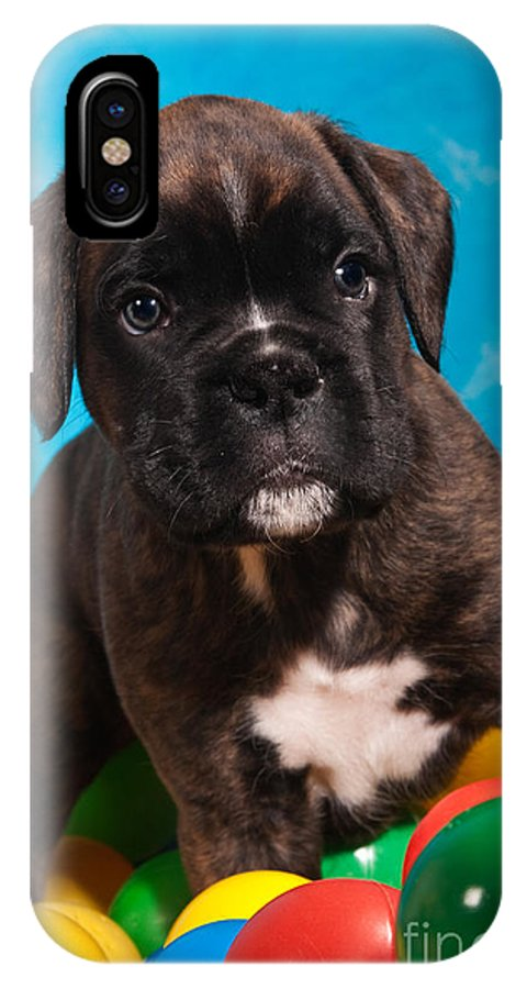 Ball IPhone X Case featuring the photograph little Boxer dog puppy by Doreen Zorn