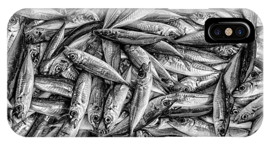 Fish Market IPhone X Case featuring the photograph Tile Of Fishes by Dobromir Dobrinov