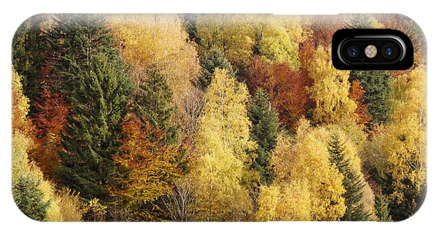 Multicolored IPhone X Case featuring the photograph Autumn by Patrick Kessler