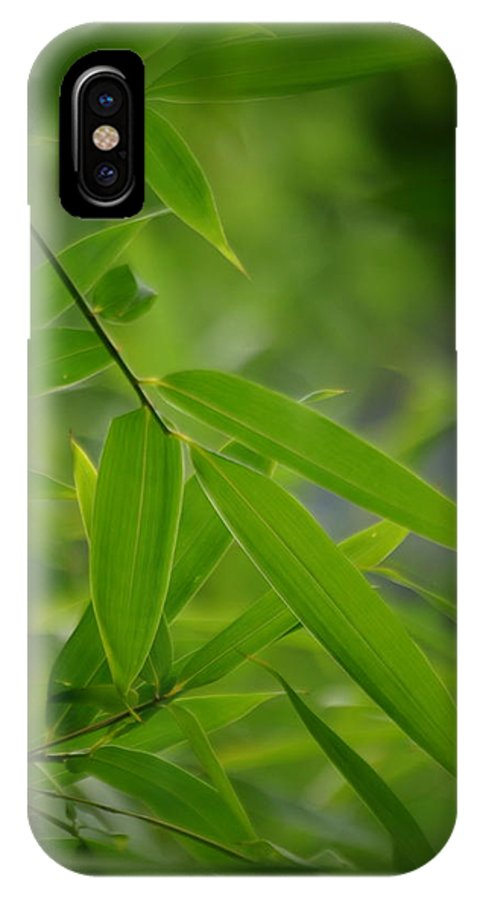 Green IPhone X Case featuring the photograph Bamboo Leaves by Nathan Abbott