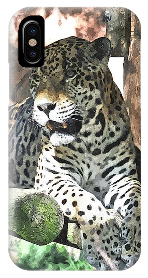 Animal IPhone X Case featuring the mixed media Big Cat by Barry Spears