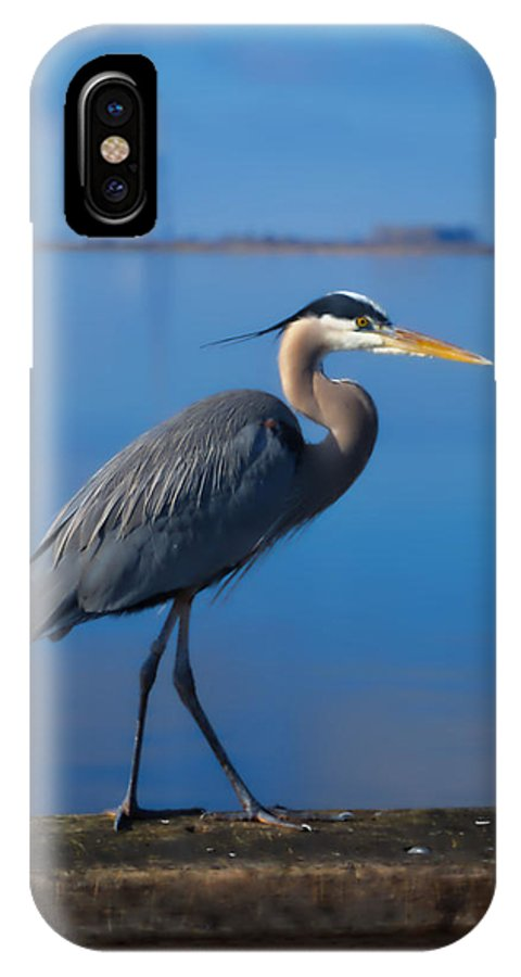 Blue IPhone X Case featuring the photograph Blue Heron by Bradley Bennett