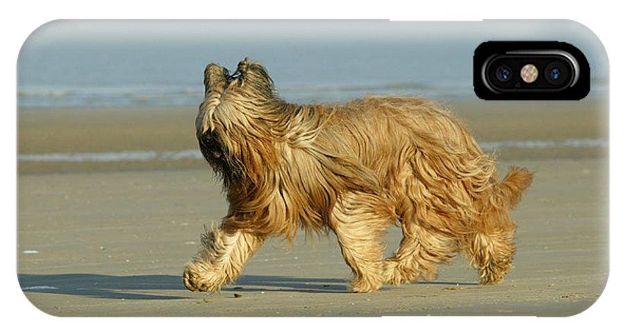 Briard IPhone X / XS Case featuring the photograph Briard Dog by Jean-Michel Labat