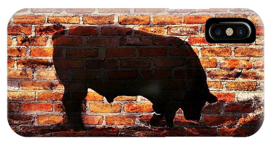 Big; Bull; Animal; Cattle; Farm; Rural; Sunrise; Sand; Bath; Dust; Dusk; Black; Green; Grass; Field; Photoshop; Texture IPhone X Case featuring the photograph Bull At Sunrise by Werner Lehmann