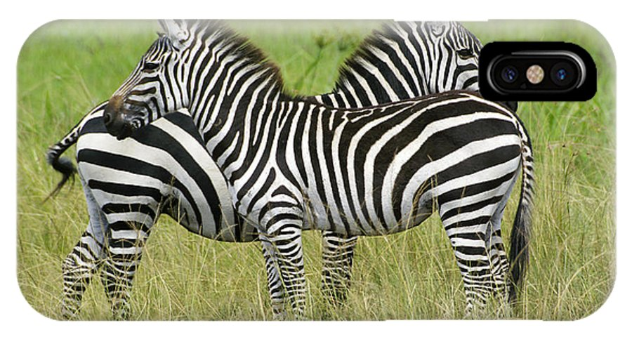 Africa IPhone X Case featuring the photograph Crisscross Stripes by Michele Burgess