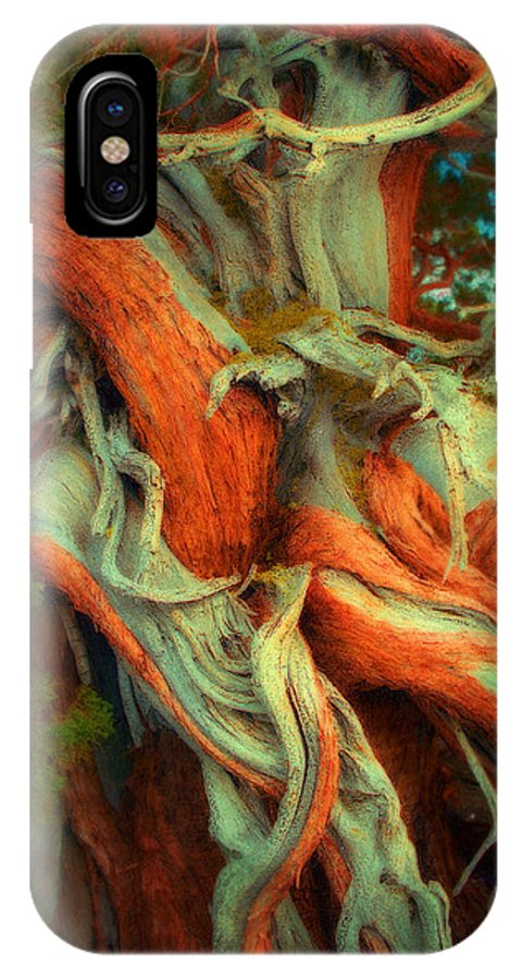 Redwood IPhone X Case featuring the mixed media Deranged Redwood by Lar Matre