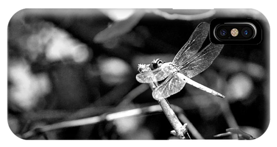 Dragonfly IPhone X Case featuring the photograph Dragonfly by Tara Potts