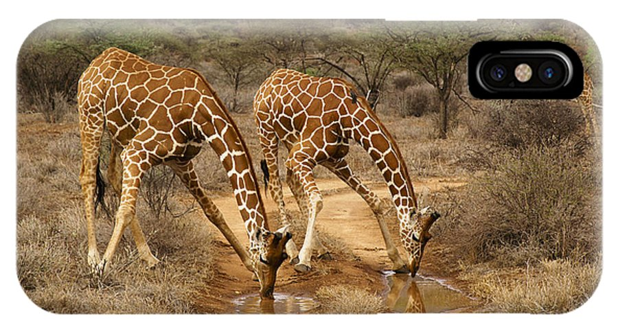 Africa IPhone X Case featuring the photograph Drinking In Tandem by Michele Burgess
