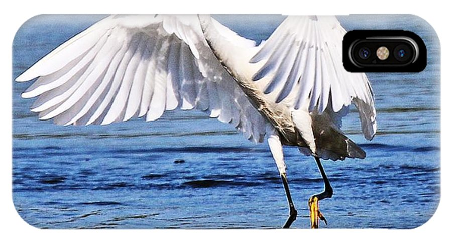 Egret IPhone X Case featuring the photograph Egret by DVP Artography