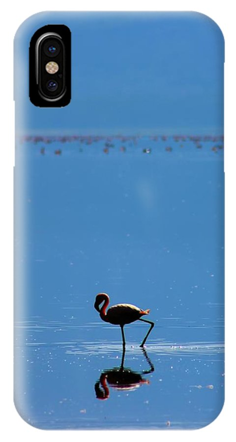 Flamingo IPhone X Case featuring the photograph Flamingo by Amanda Stadther