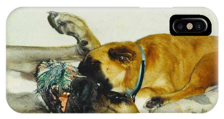 Play Time IPhone X Case featuring the photograph Great Dane And Australian Sheperd by Robert Floyd