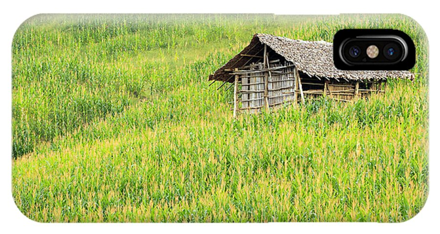 Agricultural IPhone X Case featuring the photograph Green Corn Field by Apisit Sriputtirut