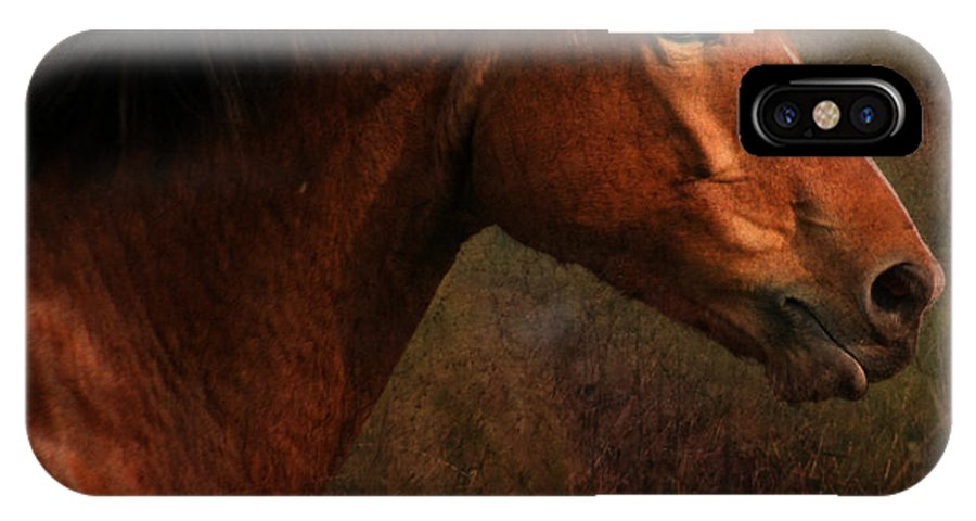 Horse IPhone X Case featuring the photograph Horse Portrait by Angel Ciesniarska