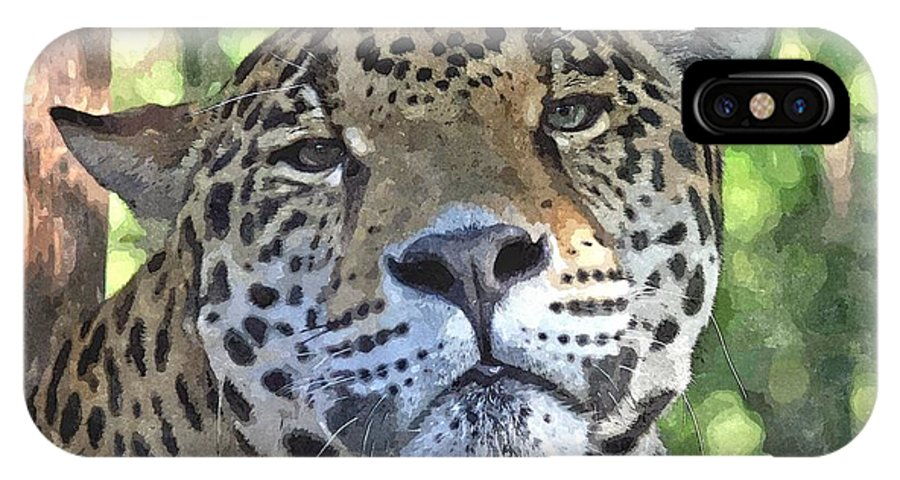 Animal IPhone X Case featuring the mixed media Jaguar 2 by Barry Spears