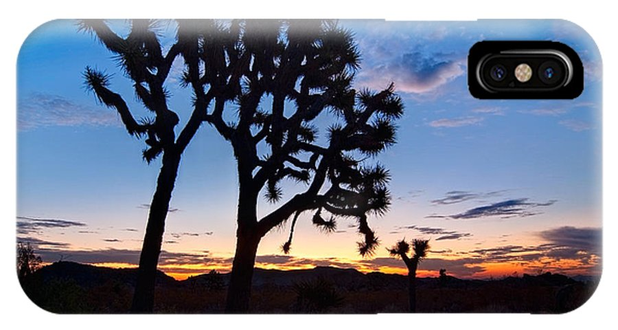 Yucca Brevifolia IPhone X Case featuring the photograph Josua Trees Beautifully Lit During Sunrise In Joshua Tree Nation by Jamie Pham