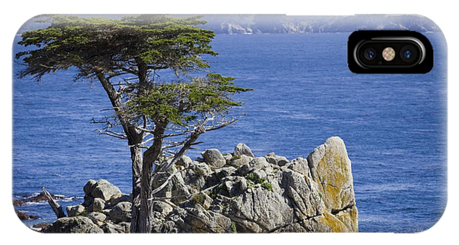 Lone Cypress IPhone X Case featuring the photograph Lone Cypress Tree by B Christopher
