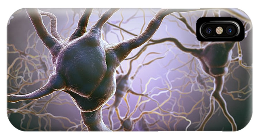 Anatomical Model IPhone X Case featuring the photograph Neuron by Science Picture Co