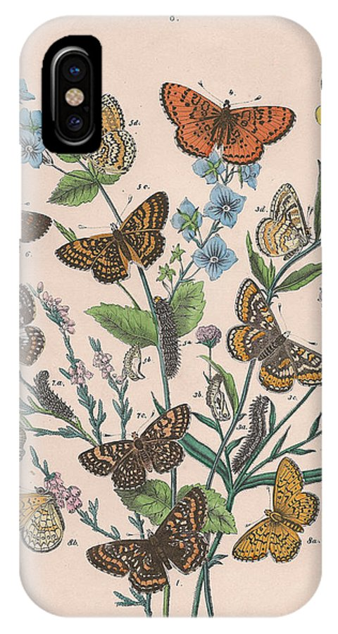 Butterfly IPhone X Case featuring the drawing Nymphalidae by W Kirby