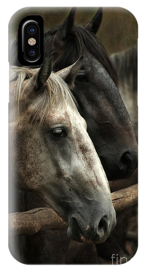 Horse IPhone X Case featuring the photograph Over The Fence by Angel Ciesniarska