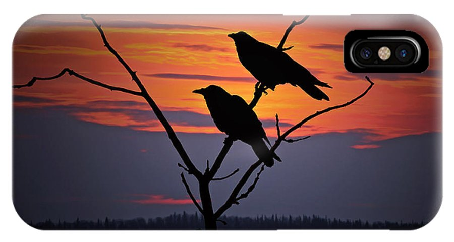 Raven IPhone Case featuring the photograph 2 Ravens by Ron Day
