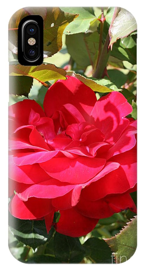 Red Rose IPhone X Case featuring the photograph Red Red Rose by Christiane Schulze Art And Photography
