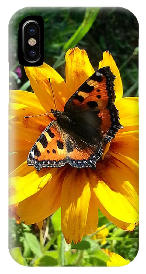 Butterfly IPhone X Case featuring the photograph Small Tortoiseshell by Kathryn Swaffield