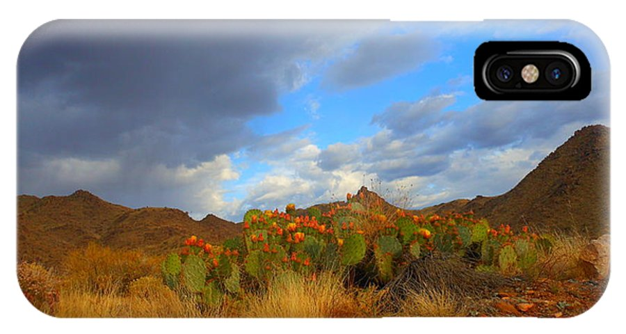 Landscape IPhone X / XS Case featuring the photograph Springtime In Arizona by James Welch