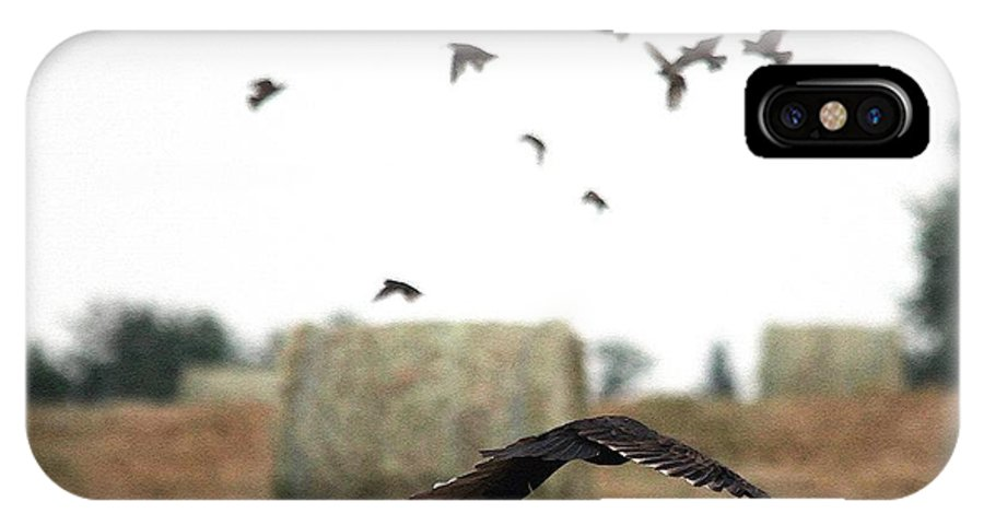 Mccombie IPhone X Case featuring the painting Turkey Vulture Takes Flight by J McCombie