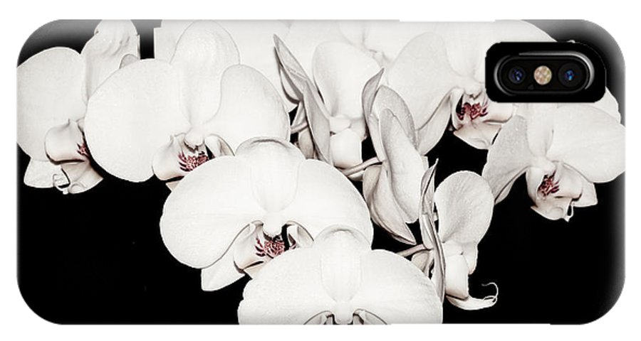 White IPhone X Case featuring the photograph White Orchids On Black by Yurix Sardinelly