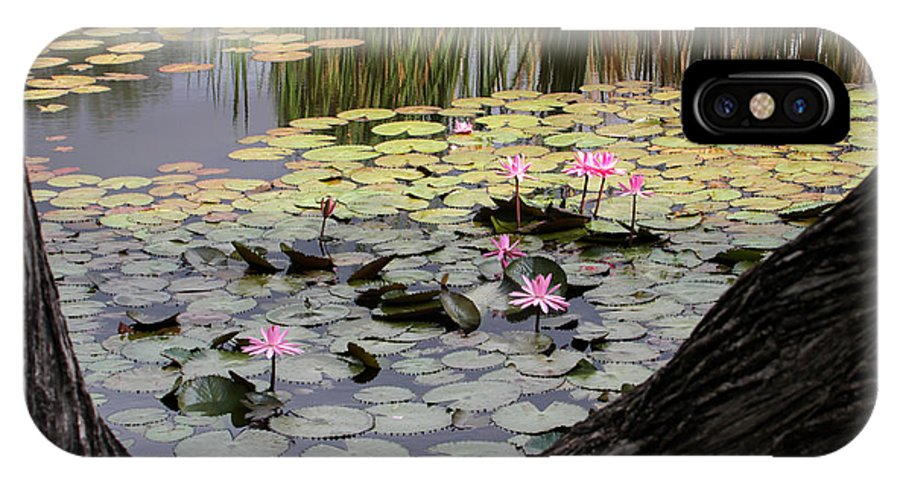 Landscape IPhone X Case featuring the photograph Wild Water Lilies In The River by Sabrina L Ryan