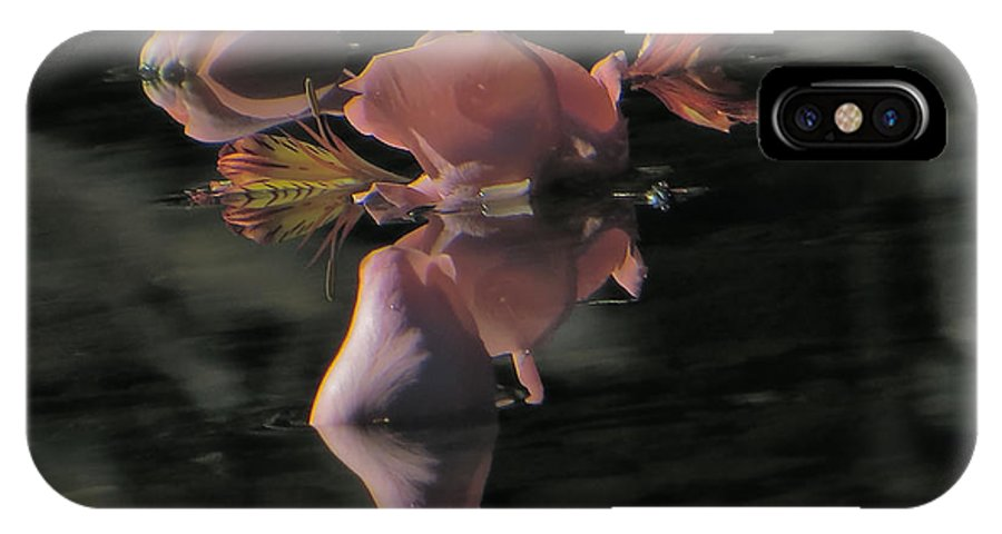 Rose Petals; River; Reflection; Flowing Water IPhone X Case featuring the photograph Blossom Rain 6 by Georg Kickinger