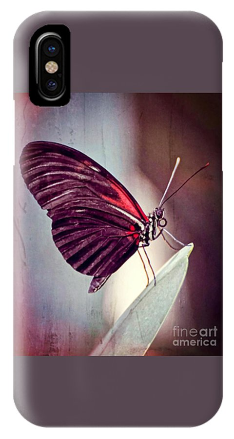 Butterfly IPhone X Case featuring the photograph Butterfly by Savannah Gibbs