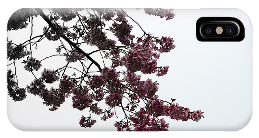 Cherry Blossoms IPhone X Case featuring the photograph Cherry Blossoms by Gee Lyon