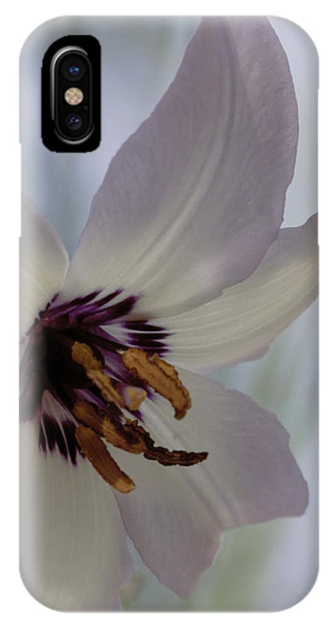 Fawn Lily IPhone X Case featuring the photograph Fawn Lily by Betty Depee