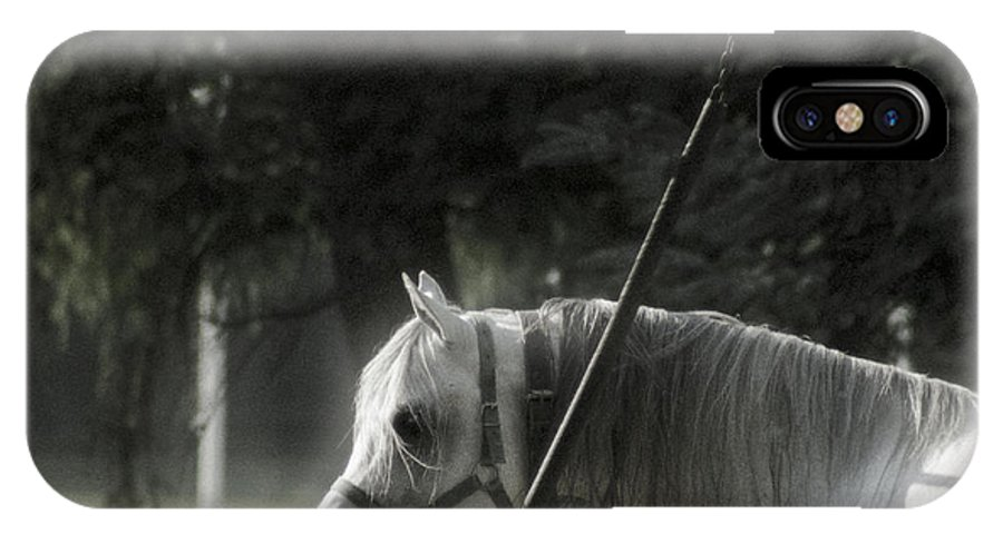 Horse IPhone X Case featuring the photograph In The Captivity by Angel Ciesniarska