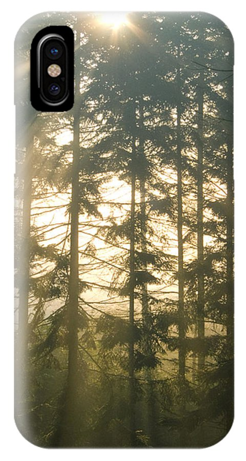 Nature IPhone Case featuring the photograph Light In The Forest by Daniel Csoka