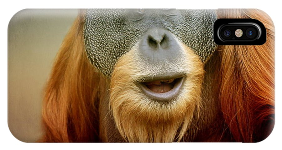 Animal IPhone X Case featuring the photograph Orang Utan by Heike Hultsch