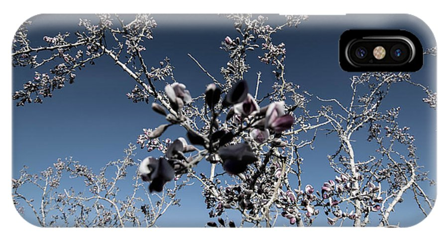 Wildflowers IPhone X Case featuring the photograph Bella by Marit Runyon