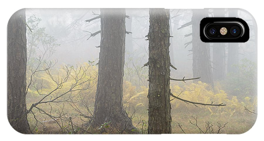 Autumn IPhone X Case featuring the photograph Autumn Fog Dolly Sods by Thomas R Fletcher